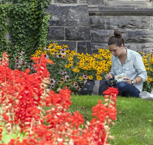 Woman sitting on grass in garden reading